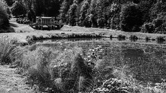 Bath Prior Park 2018 08 02 #20 (Gareth Lovering Photography 5,000,061) Tags: bath prior park nationaltrust gardens palladian bridge serpentine lakes viewpoint england olympus penf 14150mm 918mm garethloveringphotography
