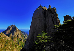 Rock formations and Tiandu Peak at Huangshan : Spring afternoon . . .  金蟾望月, 孔雀戲蓮花, 龜兔賽跑, 天都峰 (Clement Tang **busy**) Tags: 孔雀戲蓮花 龜兔賽跑 天都峰 huanshan yellowmountain anhuiprovince china travel summerafternoon hdr unesco bluesky landscape scenicsnotjustlandscapes distanthill nationalgeographic nature closetonature concordians geologicalformation 黃山 backlit sidelit pinetrees worldheritagesite rabbit lotus graniterocks 金蟾望月 peacock