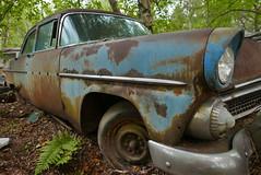 (theleakybrain) Tags: p1710913 kesslersautosalvage earl wi junkyard boneyard yard junk classic car rust decay patina