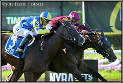 Catholic Boy wins the Belmont Derby (Spruceton Spook) Tags: horseracing horses belmontpark starsandstripesfestival catholicboy analyzeit belmontderby