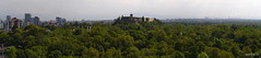 Skyline Chapultepec