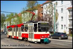 212-2018-04-19-5-Bahnhofstraße (steffenhege) Tags: frankfurtoder svf tram tramway strasenbahn streetcar ckd kt4d 212 svf212