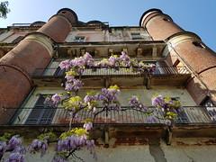 20180421_164152 (kriD1973) Tags: europa europe italia italy italien italie lombardia lombardei lombardie milano milan mailand orto botanico pinacoteca