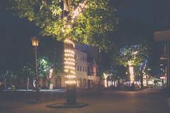 Brest at Night (modaser) Tags: belarus belarustrip brest cityscape longexposure longexposurephotography night nightphotography sovetskaya street streetphotography брест беларусь