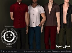 Marley @Shiny Shabby (Ainadara Resident) Tags: i3m i3fco signature male men shirt blouse gianni mesh original shiny shabby undress me scripted unwear strip
