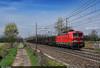 DB Cargo 191.013 (Marco Stellini) Tags: db cargo italia vectron siemens e191 dc