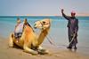 Man with camel (from Córdoba) Tags: man camel qatar desert candid sand sea coast middleeast exotic tunic