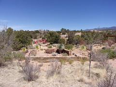 100_0591 (f l a m i n g o) Tags: albuquerque nm santafe newmexico trip april 2018