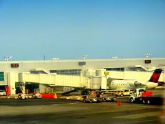 JFK Airport. Busy Day (dimaruss34) Tags: newyork brooklyn dmitriyfomenko image sky jfkairport aircraft airplane airliner passage terminal