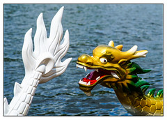 Hic sunt dracones (Photography And All That) Tags: hicsuntdracones dragon dragons dragonboat dragonboats race races tail head scales water river rivers eyes expression colour colours colourful sony sonyalpha7mark3 sonyilce7m3 sonyalpha ilce7m3 ripples flow jaws boat boats here be herebedragons