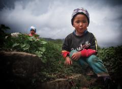 IMGP1647 (Alex Ravin) Tags: nepal himalaya himalayas annapurna dhaulagiri trekking landscape fishtale machhapuchre hiking portrait children nepali