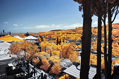 'City of Love', Signagi, Georgia (Infrared Photography- False Colors + Panorama) ​ (jc reyes) Tags: travels ir infrared infraredmaster digitalinfrared infraredimages infraredworld infraredphoto irfilter irphotography colorinfrared falsecolors invisiblelight creativeir creativeiramericas creativeireurope iginfrared photography infraredcamera infraredlandscape kolarivision jawdroppingshots epiccaptures igworld nikon nikonphotography nikkor summer cityoflove sighnaghi ​