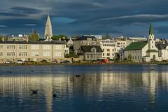 Reykjavik, Islande (yvon.kerdavid) Tags: lac islande reykjavik églises oiseaux