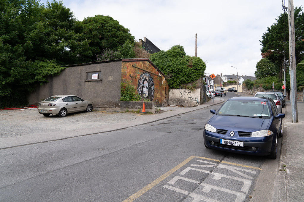 EXAMPLES OF STREET ART [URBAN CULTURE IN WATERFORD CITY]-142272