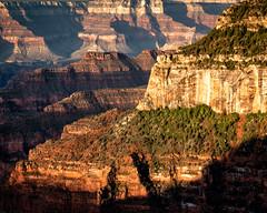 Bright Angel Point Sunrise 2 (shawnhutcherson) Tags: grandcanyon brightangel sunrise nikon landscape arizona usa