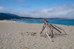 Fuji-X-E3-DSCF1279-20180720 (Drew Saunders) Tags: beach california carmel carmelriverstatebeach carmelbythesea driftwood ocean