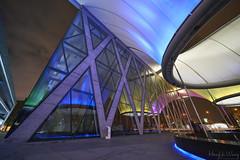 _DSC1577 (Hong Yu Wang) Tags: taiwan a73 1224g 大東文化藝術中心 kaohsiung night architecture