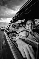 124/365 - Roxy (Andreas Mamoukas Photography) Tags: macedonia timeless macedoniagreece makedonia macedoniatimeless macedonian macédoine mazedonien μακεδονια македонијамакедонскимакедонци