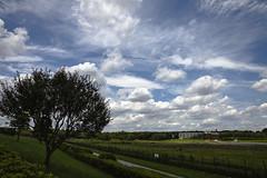 A SMALL AIRPORT, SOME PARKS AND CLOUDS - CLXIV (Jussi Salmiakkinen (JUNJI SUDA)) Tags: chofu tokyo japan cityscape park airport sky wood landscape tama 調布 飛行場 空港 林 森 空 武蔵野 多摩 東京 日本 風景 clouds summer 2017 heinäkuu july