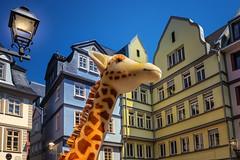 Giraffe in town (FocusPocus Photography) Tags: frankfurt stadt city häuser houses giraffe architektur architecture lampe lamp