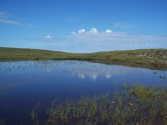Reflections on a loch, Walk to Sandwood, North West Sutherland, July 2018 (allanmaciver) Tags: walk sandwood north west sutherland peaty soil reflections clouds area natural habitat unspoiled scotland allanmaciver