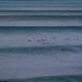 Bells Beach Big Surf-21