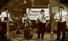 Truman's Ridge, Sycamore. 1 (EOS) (Mega-Magpie) Tags: canon eos 60d outdoors live bluegrass music trumans ridge sycamore public library il illinois usa america sepia guitar bass banjo people person man lady dude woman fella musician