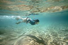 IMG_0283A (Aaron Lynton) Tags: snorkel snorkeling maui hawaii best amazing underwater ocean pacific turtle honu diving fun summer refraction clarity clear water overunder split view spl