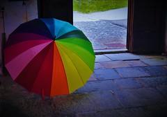 Ad ognuno il suo colore. E tu... di che colore sei? (ornella sartore) Tags: colori ombrello particolari porta