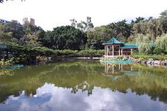 SDIM0115 (LZ775) Tags: sigma 1750mm sd1m 適馬 适马 康樂公園 honglokpark fanling 粉嶺 岭 香港 新界 hongkong newterritories x3 foveon