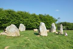 2018-05-18 06-02 England 477 Duloe Stone Circle