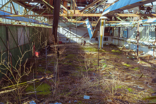 the area around the Abandoned Flugplatz Rangsdorf