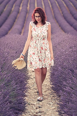 _DSC7771 (quentinfrans) Tags: d750 tamron 70200 france valensole angelvin provence lavande girl women femme