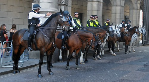 London Metropolitan Police And London City Police Mounted Divisions.