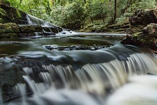 River Don - Green Moor