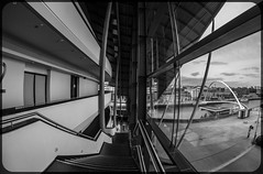 In and around the Sage Gateshead. . . (CWhatPhotos) Tags: cwhatphotos photographs photograph pics pictures pic picture image images foto fotos photography artistic that have which contain newcastle upon tyne gateshead north east england uk olympus micro four thirds camera 43 penf pen thesage£sagenortheastenglandtyne wear inside outside views wide angle windows art samyang fisheye fish eye prime 75mm manual lens