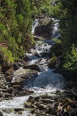 Ova da Surlej (Bephep2010) Tags: 2017 77 alpen alpha bach engadin frühling graubünden grisons ovadasurlej sal1650f28 slta77v schweiz silvaplana sony switzerland wald wasser wasserfall alps creek forest spring water waterfall silvaplanasurlej ch