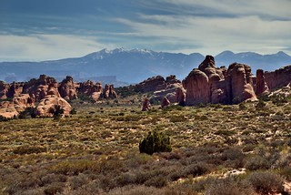 It Never Hurts to Have a Mountain Backdrop! (Arches National Park)