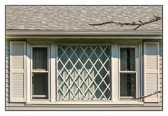 Latticed (Timothy Valentine) Tags: wednesday sherwoodcircle window large eastbridgewater massachusetts unitedstates us