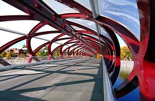 Peace Bridge. Calgary.