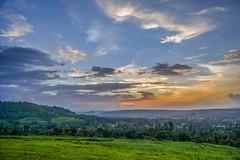 The Evening (Utkarsh 2016) Tags: sunsets colours colourful evening eveningsky nikond3300 nikon nikontop cloudy cloudscape greenery landscapelove landscape square flickr bluesky beauty light