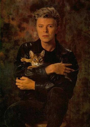 David Bowie fan photo