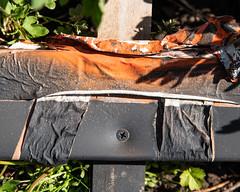 IMGP2058 (agianelo) Tags: paint tape metal wood orange black green grass