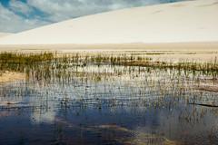 Maranhão - Brasil (Osvaldo Borges Cardoso) Tags: maranhão brasil santoamaro lençóis lençóismaranhenses dunas reflexo