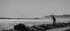 fishing in San Francisco Bay (verona39) Tags: fishing bay evening blackwhite monochrome gate golden view francisco san