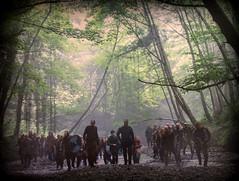 """ Viking Orienteering and Beserkers Club! "" ("" P@tH Im@ges "") Tags: loughdan cowicklow vikings ireland ©bbc lugala guinnessestate"