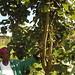 Rwanda Green Fund Investment - ARCOS Network