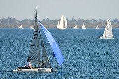 800_4540 (Lox Pix) Tags: queensland qld australia woodypoint hyc humpybongyachtclub winterbash foiling foilingcatamaran catamaran trimaran loxpix bramblebay boats