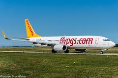 Pegasus Airlines TC-CPZ (U. Heinze) Tags: aircraft airlines airways airplane plane planespotting flugzeug haj hannoverlangenhagenairporthaj eddv nikon