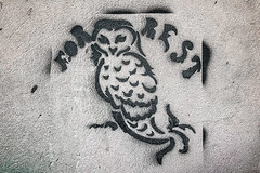 Strigo (Melissa Maples) Tags: batumi batum ბათუმი adjara აჭარა georgia gürcistan sakartvelo საქართველო asia 土耳其 apple iphone iphonex cameraphone spring graffiti streetart art stencil forrest text owl
